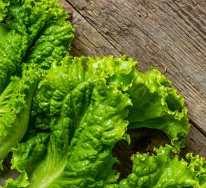 astuce comment conserver votre salade plus longtemps. Black Bedroom Furniture Sets. Home Design Ideas