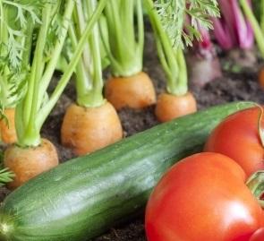 legumes de printemps asperge radis et tomate grand frais. Black Bedroom Furniture Sets. Home Design Ideas