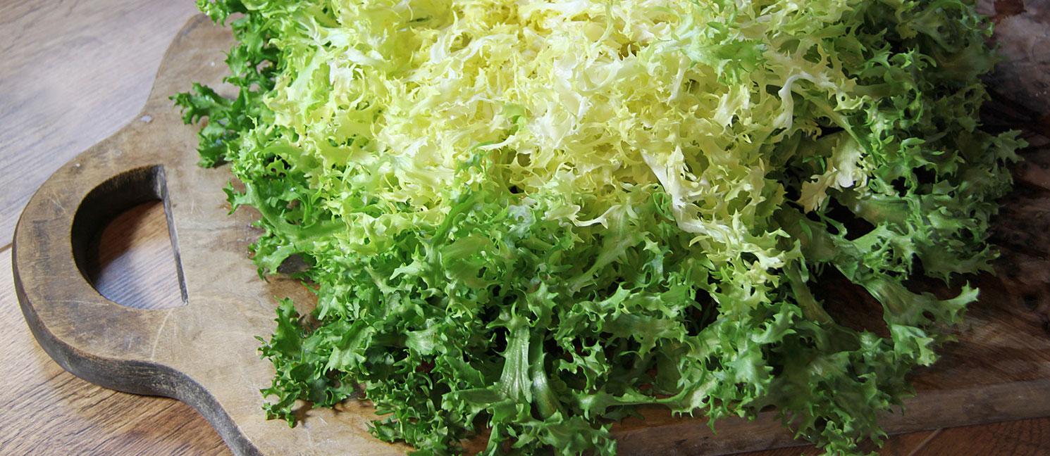 Salade fris e prix recettes et conservation grand frais - Comment conserver la salade ...