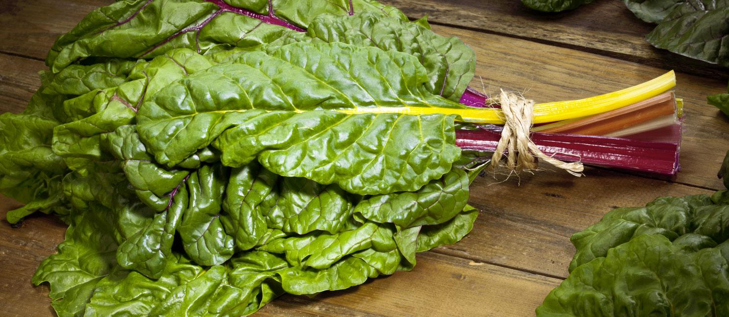 Salade red chard prix recettes et conservation grand frais - Comment conserver la salade ...
