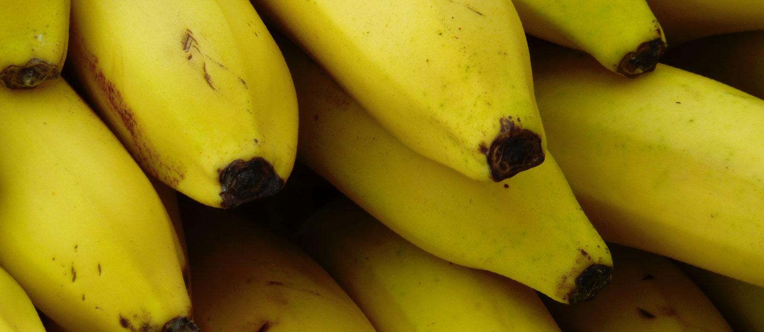 Banane plantain prix recettes et conservation grand frais - Cuisiner banane plantain ...