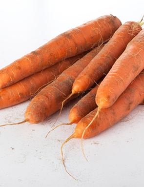 Carotte prix recettes et conservation grand frais - Comment conserver les carottes ...