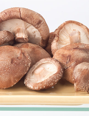 Shiitake ou lentin prix recettes et conservation grand - Comment cuisiner les champignons frais ...