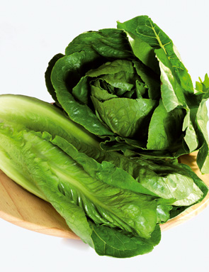 Salade romaine prix recettes et conservation grand frais - Comment conserver la salade ...